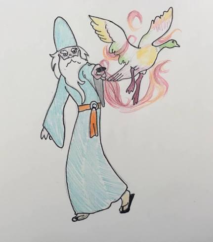 duck wizard