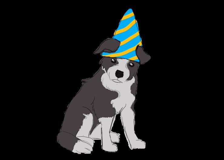 puppy_wizard