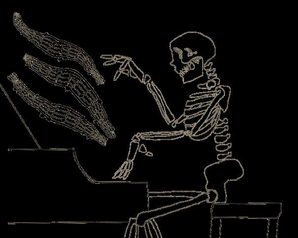 skeleton_wizard copy